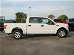 2018 F-150 Crew Cab, Pickup #19134 - photo 3