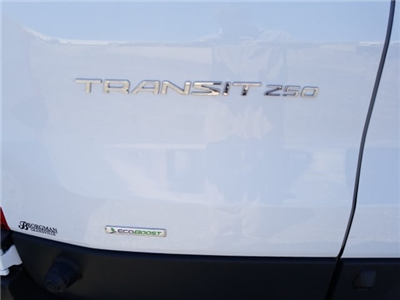 2017 Transit 250 Low Roof,  Empty Cargo Van #17T1457 - photo 20