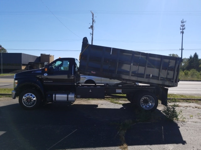 2018 F-650 Regular Cab DRW 4x2,  Landscape Dump #18T319 - photo 8