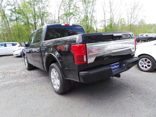 2020 F-150 SuperCrew Cab 4x4, Pickup #F00441 - photo 5