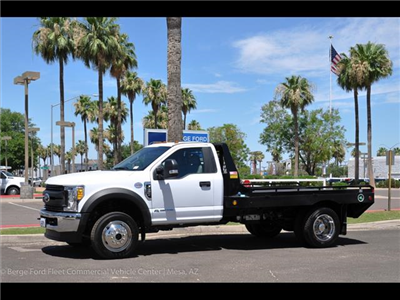 2017 F-450 Regular Cab DRW 4x4, Hillsboro GII Steel Platform Body #17P247 - photo 3