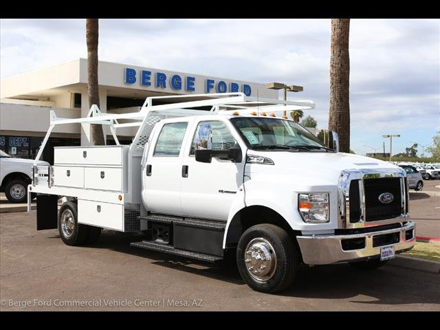 2019 F-650 Crew Cab DRW 4x2,  Scelzi Contractor Body #19P034 - photo 10