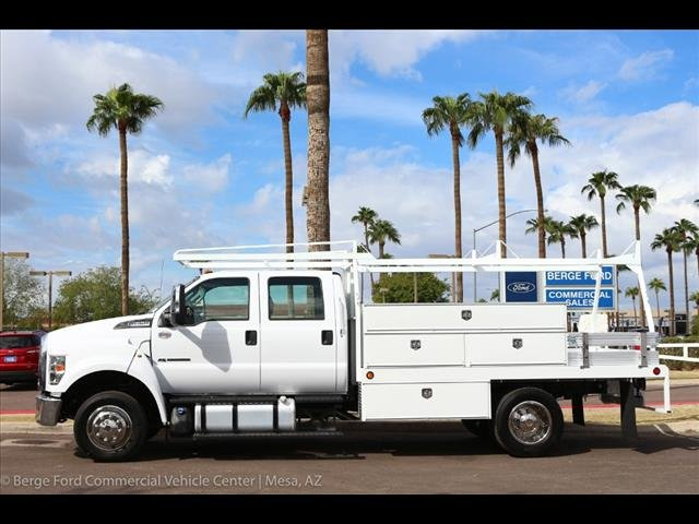 2019 F-650 Crew Cab DRW 4x2,  Scelzi Contractor Body #19P034 - photo 3
