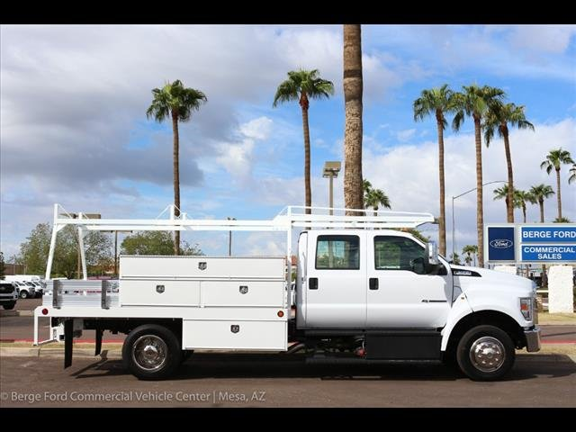 2019 F-650 Crew Cab DRW 4x2,  Scelzi Contractor Body #19P034 - photo 8