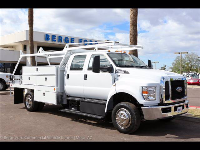 2019 F-650 Crew Cab DRW 4x2,  Scelzi Contractor Body #19P042 - photo 11