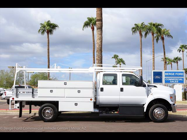 2019 F-650 Crew Cab DRW 4x2,  Scelzi Contractor Body #19P042 - photo 9