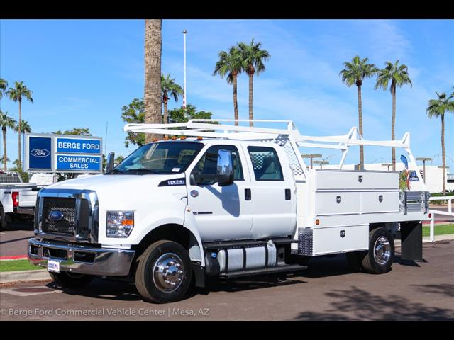 2019 F-650 Crew Cab DRW 4x2,  Scelzi CTFB Contractor Body #19P065 - photo 1