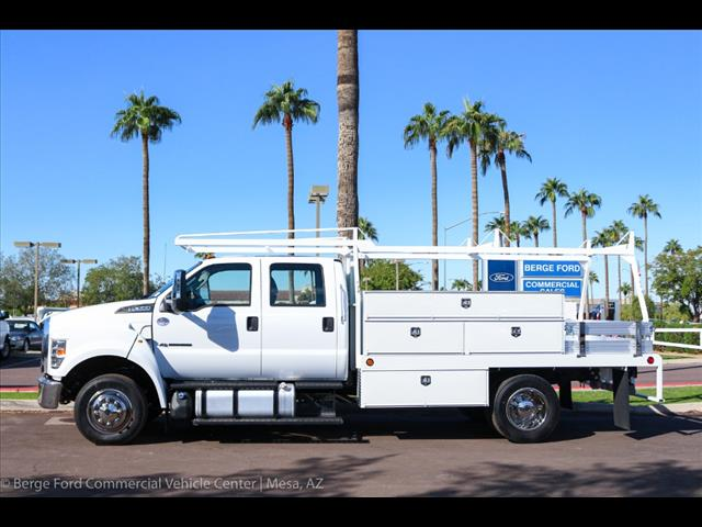 2019 F-650 Crew Cab DRW 4x2,  Scelzi Contractor Body #19P065 - photo 3