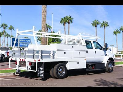 2019 F-650 Crew Cab DRW 4x2,  Scelzi CTFB Contractor Body #19P065 - photo 7