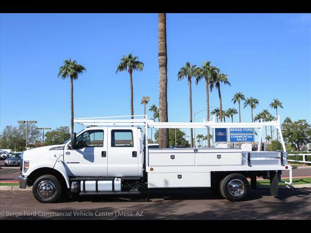 2019 F-650 Crew Cab DRW 4x2,  Scelzi Contractor Body #19P100 - photo 3