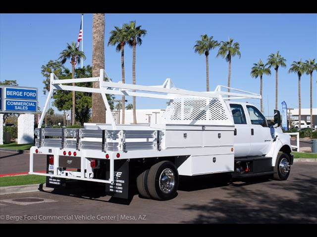 2019 F-650 Crew Cab DRW 4x2,  Scelzi Contractor Body #19P101 - photo 8