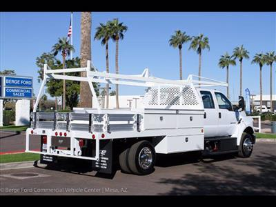 2019 F-650 Crew Cab DRW 4x2,  Scelzi CTFB Contractor Body #19P101 - photo 8