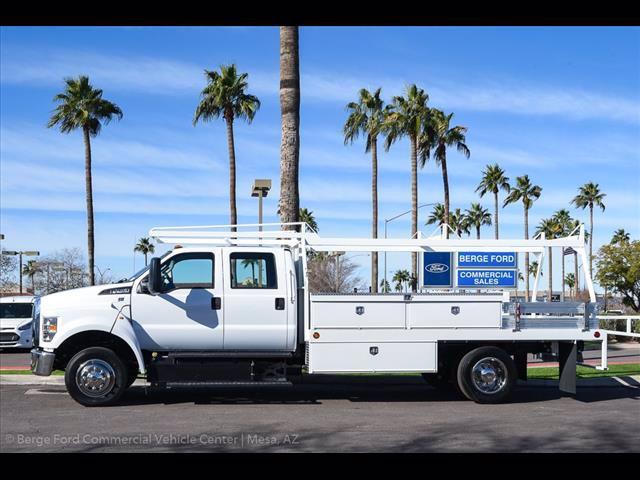 2019 F-650 Crew Cab DRW 4x2, Scelzi CTFB Contractor Body #19P144 - photo 5