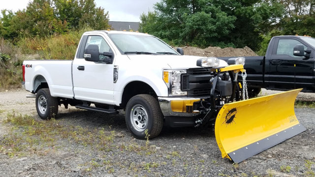 2017 F-350 Regular Cab 4x4 Pickup #173714 - photo 3