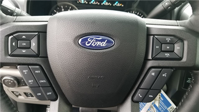 2018 F-150 Crew Cab 4x4 Pickup #18205 - photo 10