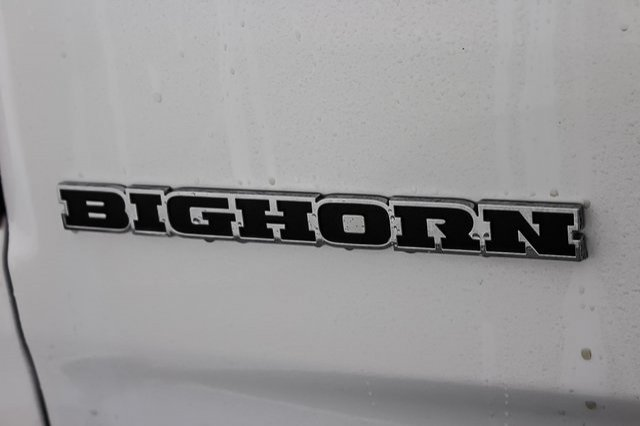 2019 Ram 1500 Crew Cab 4x4,  Pickup #1D90044 - photo 14