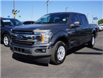 2018 F-150 Crew Cab Pickup #80070 - photo 1