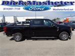 2017 F-250 Crew Cab 4x2,  Pickup #22672 - photo 1