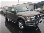 2018 F-150 Crew Cab 4x4, Pickup #22945 - photo 4