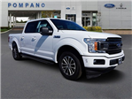 2018 F-150 SuperCrew Cab, Pickup #JKD50316 - photo 3