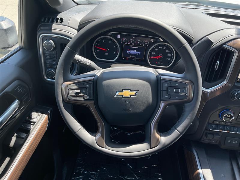 2021 Chevrolet Silverado 3500 Crew Cab 4x4, Pickup #C22805 - photo 19