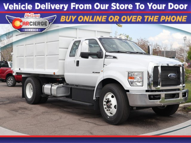 2019 Ford F-650 Super Cab DRW 4x2, Scelzi Chipper Body #F15256 - photo 1