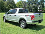 2017 F-150 SuperCrew Cab 4x4,  Pickup #90181 - photo 1