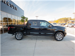 2018 F-150 Crew Cab 4x4, Pickup #00T08215 - photo 11
