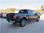 2018 F-150 Crew Cab 4x4 Pickup #00T55500 - photo 9