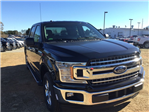 2018 F-150 Crew Cab Pickup #FB08365 - photo 3