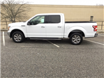 2018 F-150 Crew Cab Pickup #FB20371 - photo 6