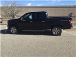 2018 F-150 Crew Cab 4x4, Pickup #FB49962 - photo 6