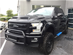2017 F-150 Crew Cab 4x4 Pickup #FC60539 - photo 1