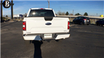 2018 F-150 Crew Cab 4x4, Pickup #JKC52476 - photo 6