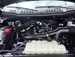2019 Ford F-150 SuperCrew Cab 4x4, Pickup #W00919G - photo 26