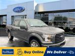 2017 F-150 SuperCrew Cab 4x4, Pickup #W191361E - photo 3