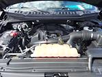 2018 Ford F-150 SuperCrew Cab 4x4, Pickup #W21594P - photo 26