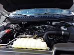 2019 Ford F-150 SuperCrew Cab 4x4, Pickup #W21661P - photo 34