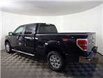 2014 F-150 SuperCrew Cab 4x4, Pickup #23462X - photo 7