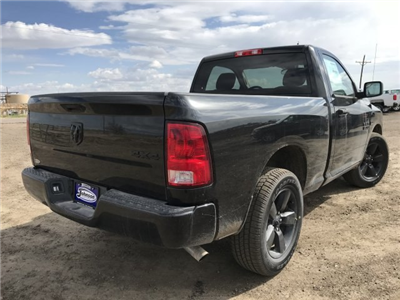 2018 Ram 1500 Regular Cab 4x4,  Pickup #C848919 - photo 6