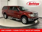2014 F-150 SuperCrew Cab 4x4, Pickup #19F723A - photo 1