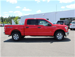 2016 F-150 SuperCrew Cab 4x4,  Pickup #B13111M - photo 4