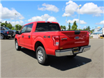 2016 F-150 SuperCrew Cab 4x4,  Pickup #B13111M - photo 6