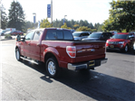 2014 F-150 Super Cab Pickup #E08836F - photo 8