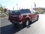 2014 F-150 Super Cab Pickup #E08836F - photo 9