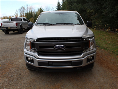 2018 F-150 SuperCrew Cab 4x4,  Pickup #FC42874 - photo 3