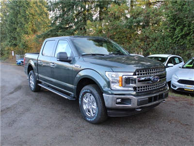 2018 F-150 SuperCrew Cab 4x4,  Pickup #FD23059 - photo 3