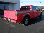 2014 F-150 SuperCrew Cab 4x4, Pickup #FB33913A - photo 1