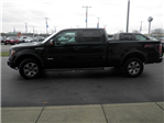 2014 F-150 SuperCrew Cab 4x4, Pickup #FB89099A - photo 7