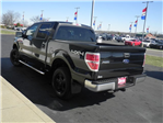 2013 F-150 SuperCrew Cab 4x4, Pickup #FD42256A - photo 5